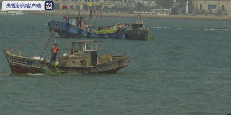 青岛浒苔灾害:累计出动船只7300余艘次 打捞约24万吨